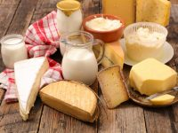 How to Automatically Record Milk Temperatures in the Dairy Industry – Datalogging Thermometers for PMO Compliance